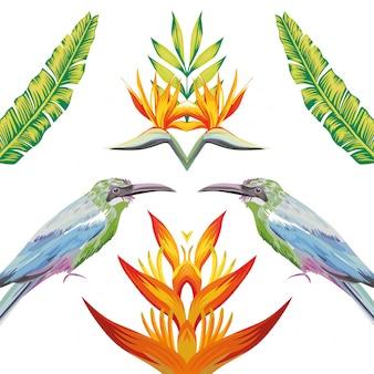 Espelho, pássaros, tropicais, flores, e, folhas