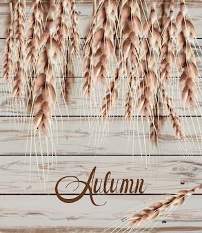 Espigas de trigo cartão de outono outono. poster rústico vintage. textura de madeira s