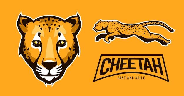 Esporte de logotipo de chita