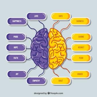 Esquema do cérebro roxo e roxo