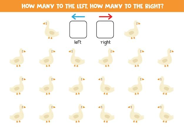 Esquerda ou direita com ganso bonito dos desenhos animados. jogo educativo para aprender a torto e a direito.