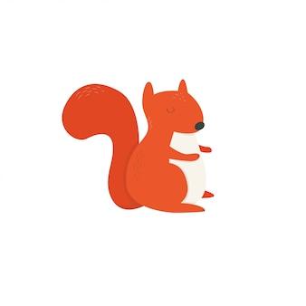 Esquilo bebê fofo