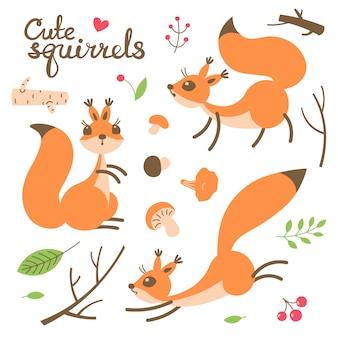 Esquilo bonito dos desenhos animados. pequenos esquilos engraçados. ilustração vetorial