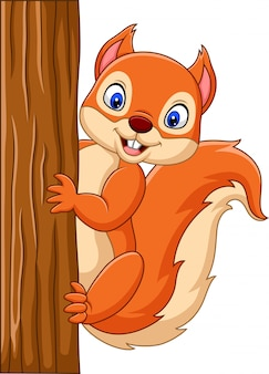 Esquilo bonito dos desenhos animados, subindo em uma árvore