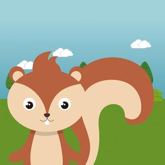 Esquilo bonito em caráter de paisagem de campo