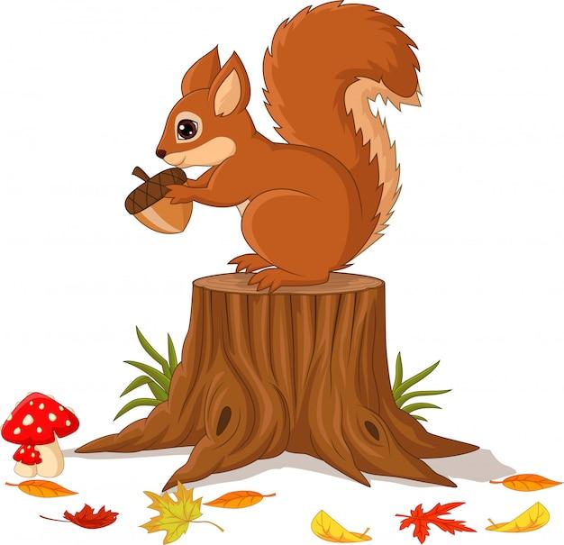 Esquilo engraçado dos desenhos animados, segurando a pinha no tronco de árvore