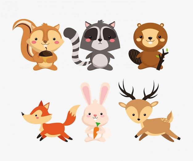 Esquilo guaxinim castor raposa imagem de ícones de coelho e veado