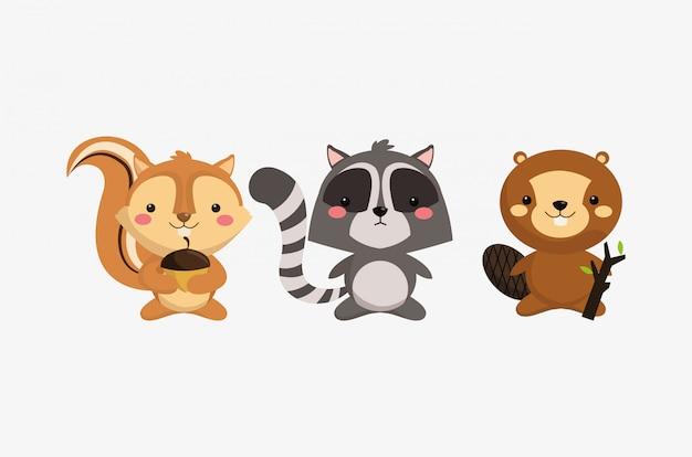 Esquilo guaxinim e castor ícones imagem