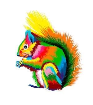 Esquilo vermelho euro-asiático de tintas multicoloridas respingo de aquarela colorida desenho realista