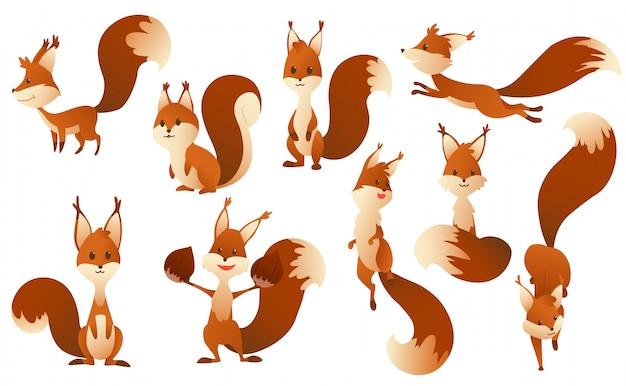 Esquilos de bonito dos desenhos animados. doces animais amigáveis.