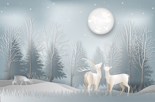 Estação do inverno dos cervos sob a paisagem da floresta do pinho da vista