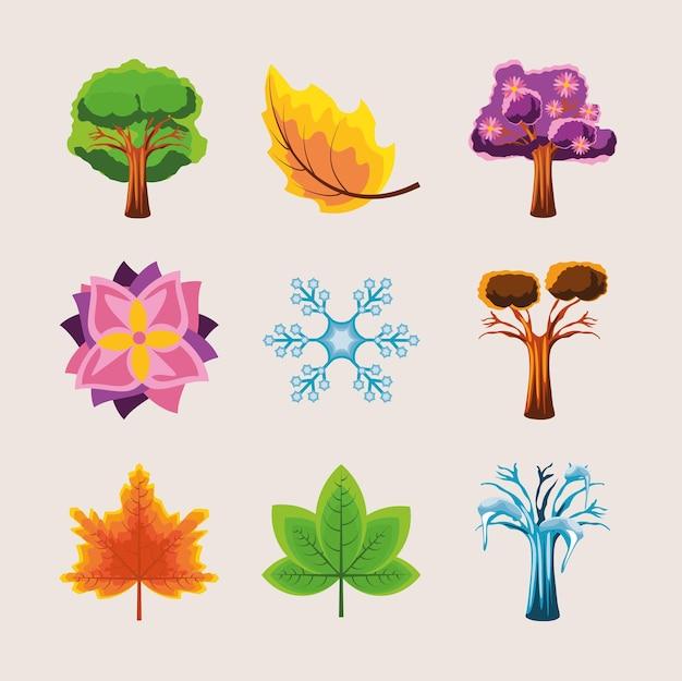 Estações, árvores, flores, primavera, outono