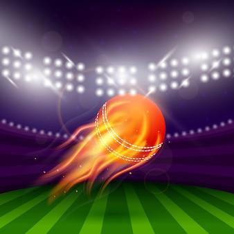 Estádio da noite de críquete
