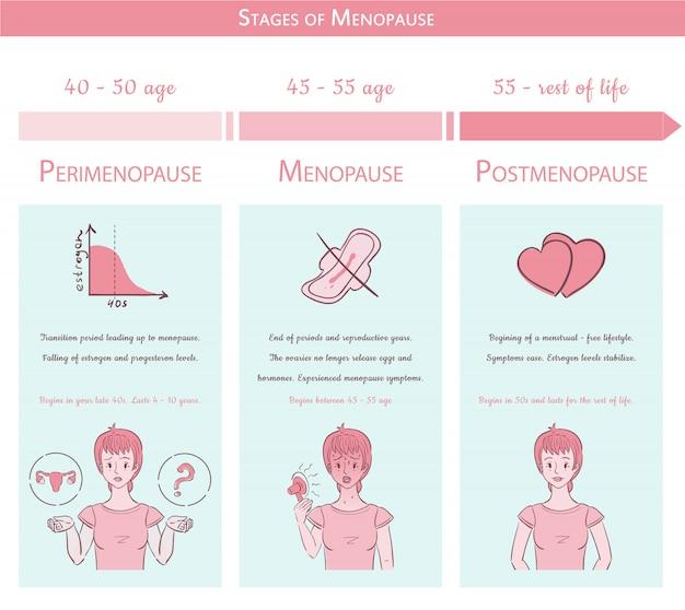 Estágios da menopausa. conceito gráfico médico com linha do tempo
