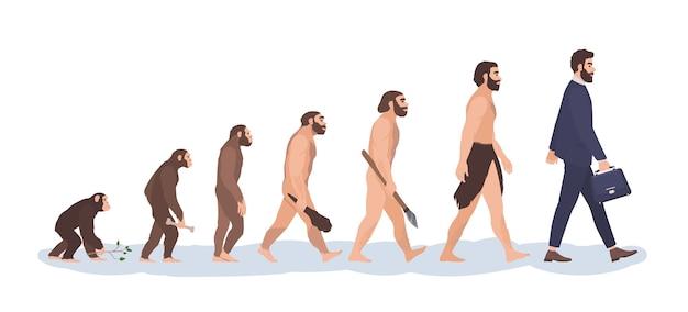 Estágios de evolução humana.