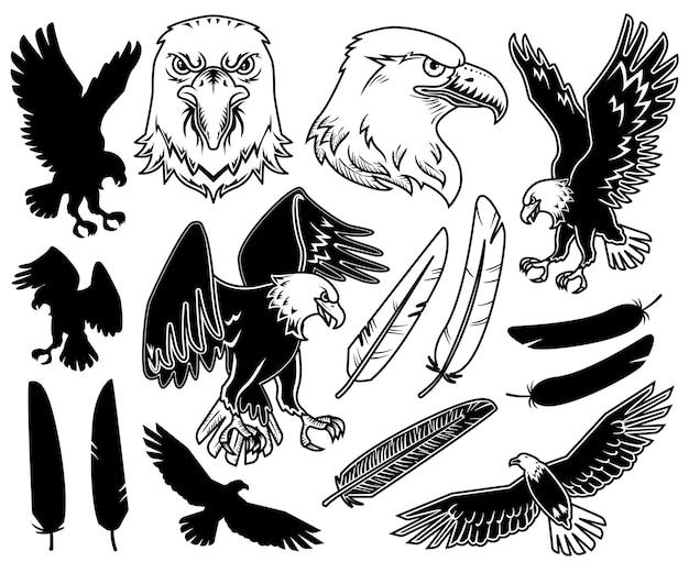 Estampas de águia