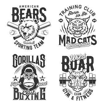 Estampas e citações de camisetas de ginástica esportiva e clube de fitness