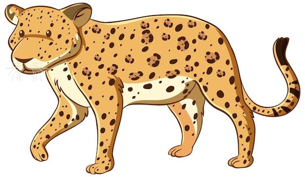 Estilo cartoon de leopardo isolado no fundo branco