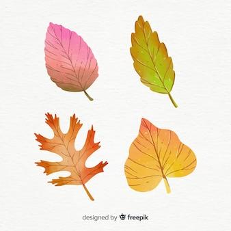 Estilo de aquarela de coleção de folhas de outono