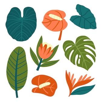 Estilo de coleção tropical de flores e folhas