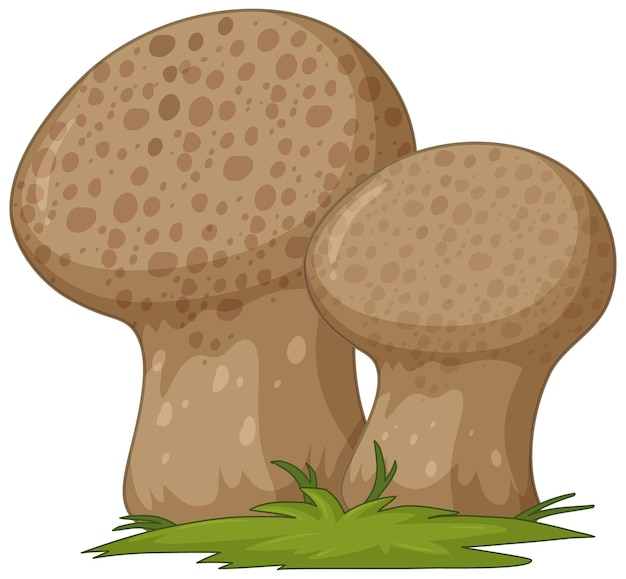 Estilo de desenho animado de fungo isolado no fundo branco