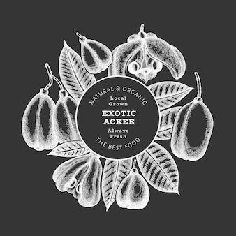 Estilo de esboço desenhado de mão ackee. ilustração de alimentos orgânicos frescos no quadro de giz. modelo de design retrô de frutas exóticas. estilo gravado botânico