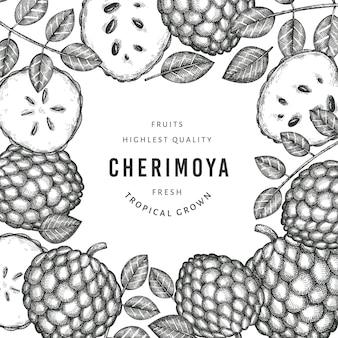 Estilo de esboço desenhado de mão cherimoya. ilustração de frutas frescas orgânicas. modelo botânico de estilo gravado.
