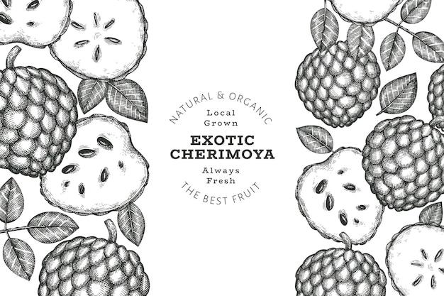Estilo de esboço desenhado de mão cherimoya. ilustração de frutas frescas orgânicas. modelo de design botânico de estilo gravado.