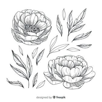 Estilo desenhado mão de flores e folhas