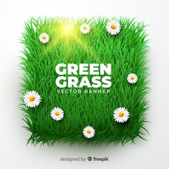 Estilo realista de grama verde bandeira