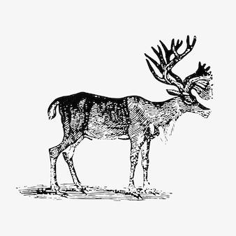 Estilo vintage de renas