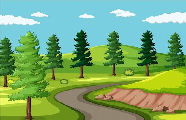 Estrada de fundo vazio na paisagem do parque