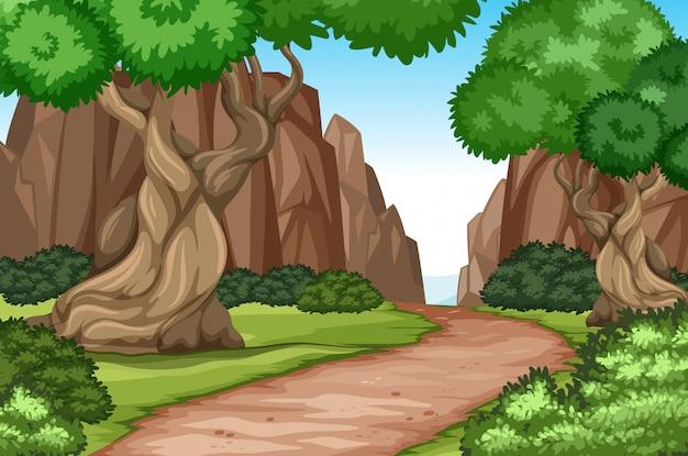 Estrada plana na natureza