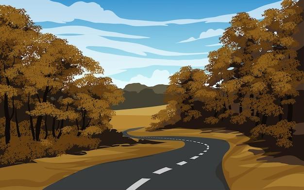 Estrada vazia na floresta em dia de sol