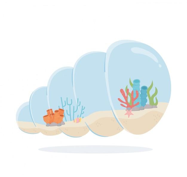 Estrela do mar recife coral areia caracol concha em forma de aquário sob ilustração em vetor mar dos desenhos animados
