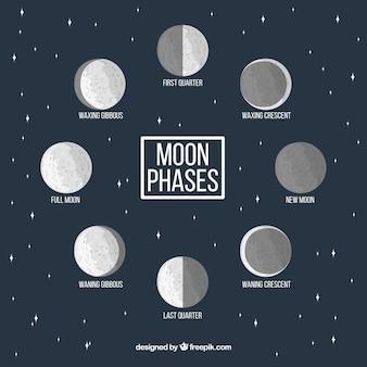 Estrelado, fundo, decorativo, lua, fases