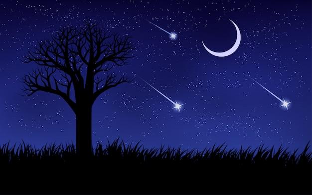 Estrelas cadentes no céu noturno