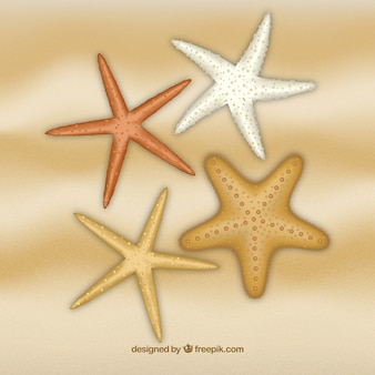 Estrelas de mar