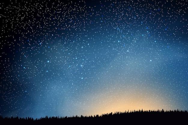 Estrelas no céu noturno. céu noturno escuro azul com muitas estrelas acima do campo de grama.