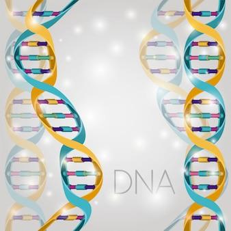 Estrutura da molécula de dna