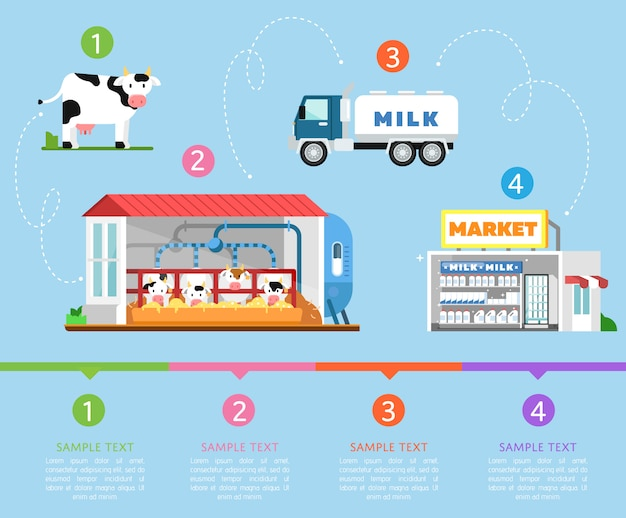Etapas da infografia de produção de leite