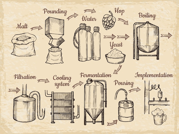 Etapas de produção de cerveja. cervejaria desenhada de mão