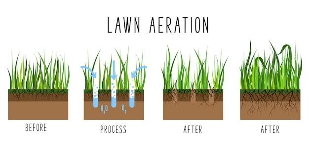 Etapas do processo de aeração do gramado - antes e depois, serviço de tratamento de grama, jardinagem