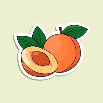 Etiqueta colorida do pêssego do vetor. fruta laranja isolada com linhas e destaques. pêssego maduro com pedra no estilo cartoon sobre o fundo verde claro.
