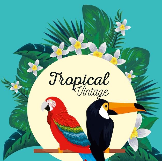 Etiqueta com animais papagaio e tucano com flores