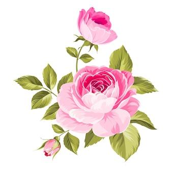 Etiqueta com flores rosas.
