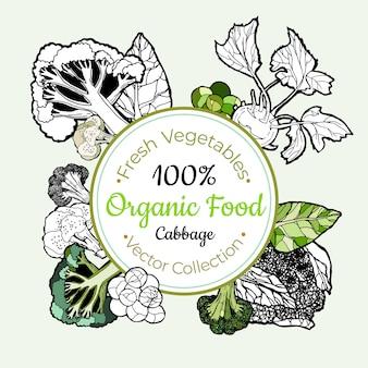 Etiqueta do vintage dos mantimentos vegetais dos brócolis da couve