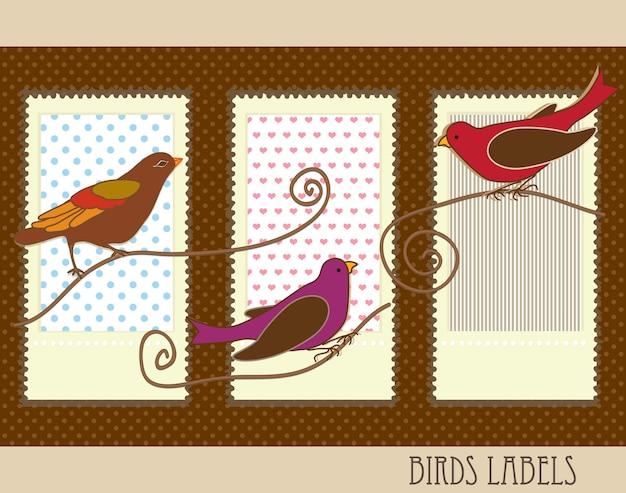Etiquetas de aves com ilustração vetorial de cores vintage