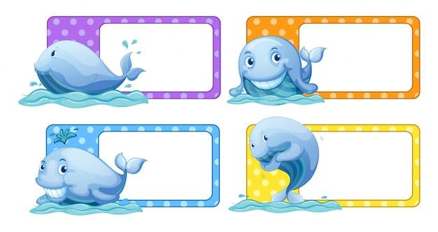 Etiquetas de bolinhas com ilustração de baleias