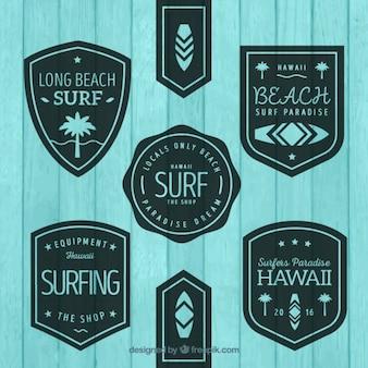 Etiquetas de surf planas vintage